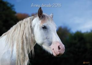HorseSpirit_1