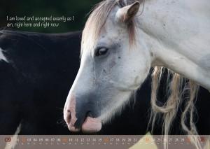 HorseSpirit_10
