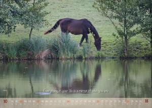 HorseSpirit_11