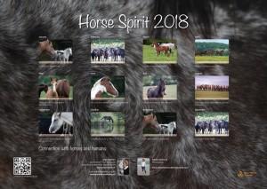 HorseSpirit_14