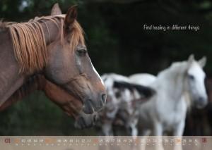 HorseSpirit_2
