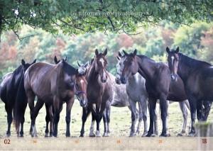 HorseSpirit_3