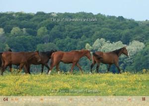 HorseSpirit_5