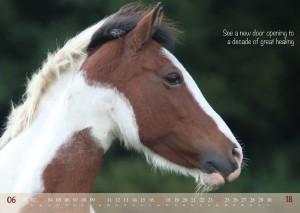 HorseSpirit_7