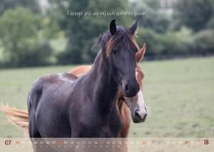 HorseSpirit_8