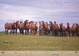 HorseSpirit_9