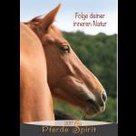 pferdespirit17